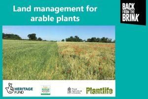 Land Management for Arable Plants Image