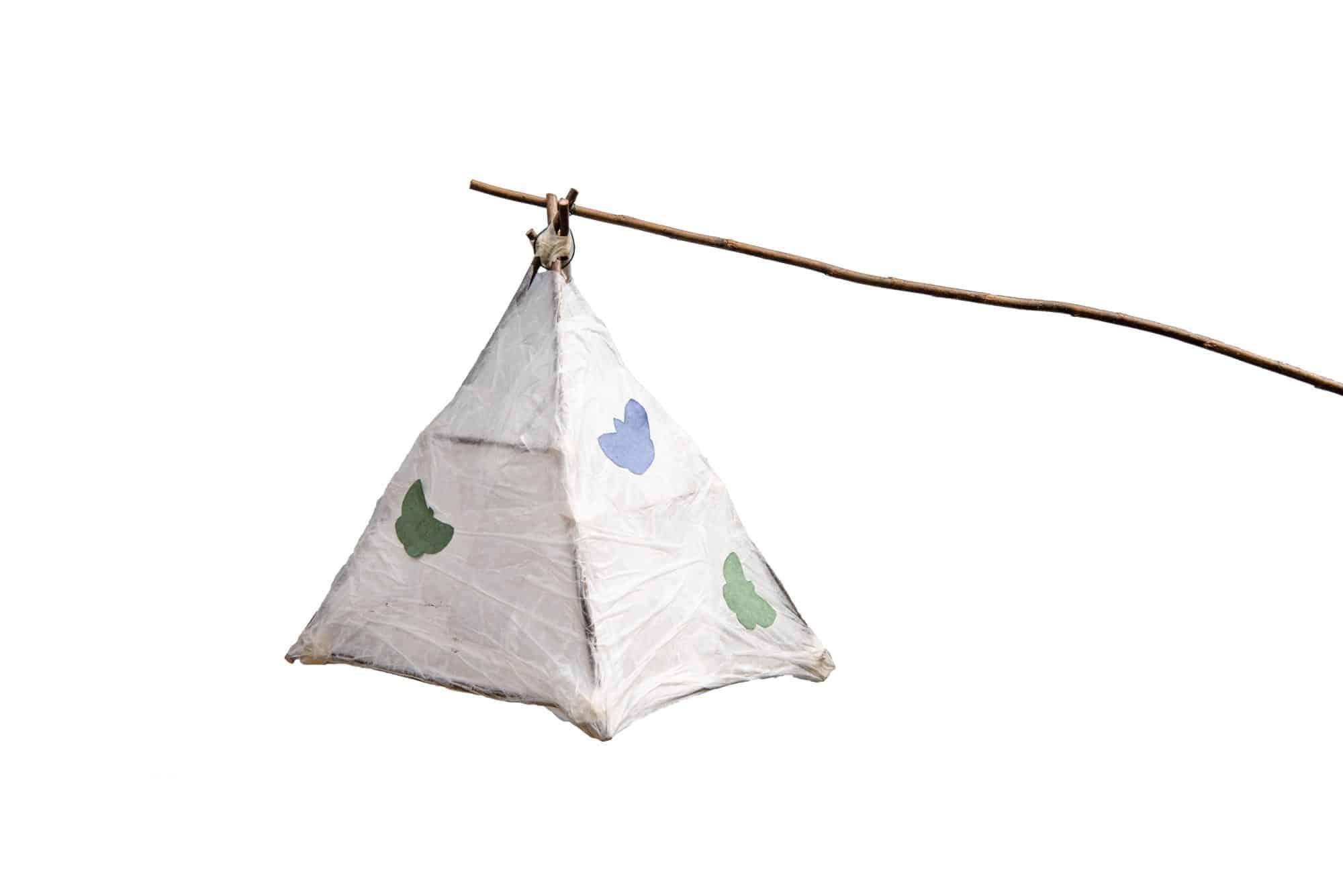 Moth Lantern