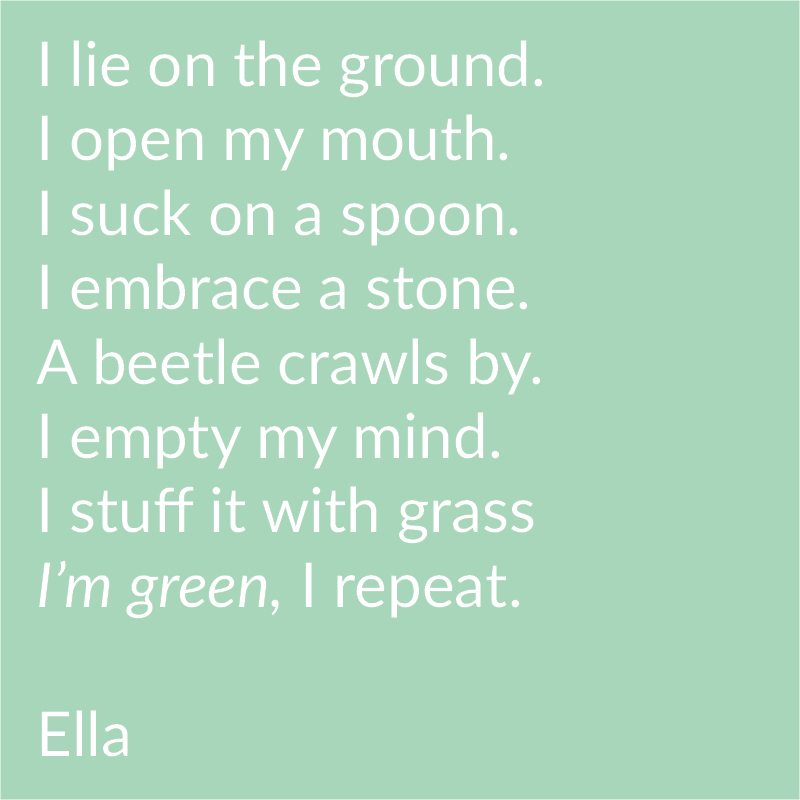 Cornish Path Moss Poetry