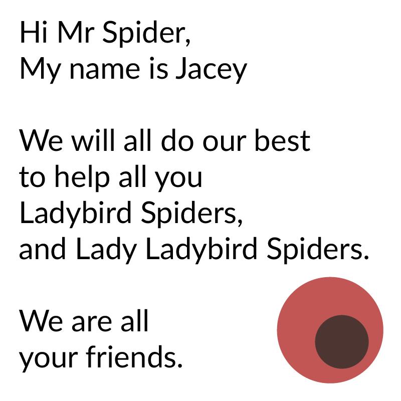 Ladybird Spider Poetry